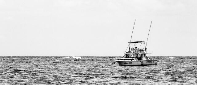 Busboys of the Sea-1