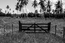 dominican-republic-b_w-small-prints-56