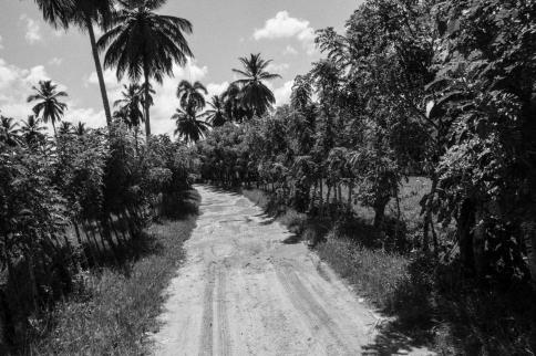 dominican-republic-b_w-small-prints-57