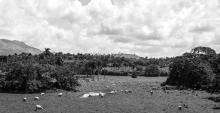 dominican-republic-b_w-small-prints-59