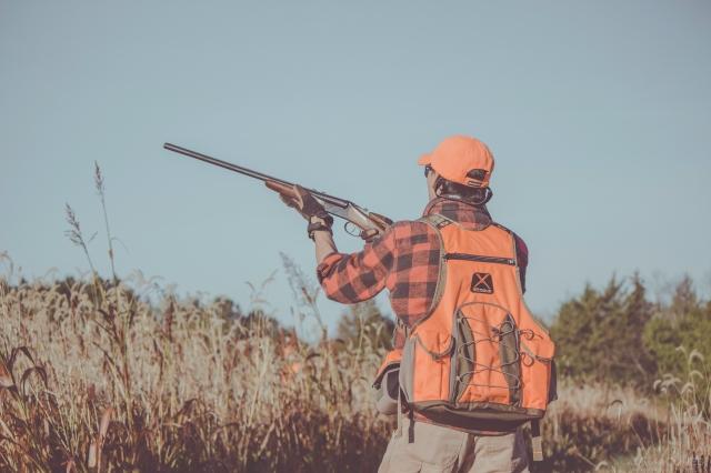 pheasant_hunting_rosehill_2016-31-of-73