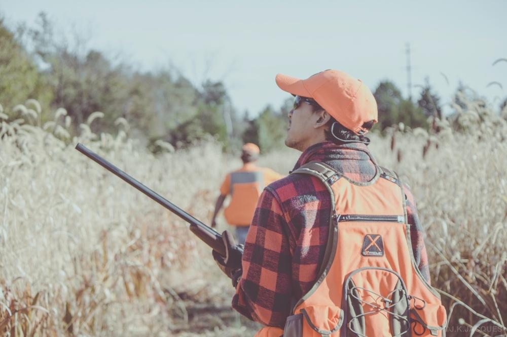 pheasant_hunting_rosehill_2016-61-of-73