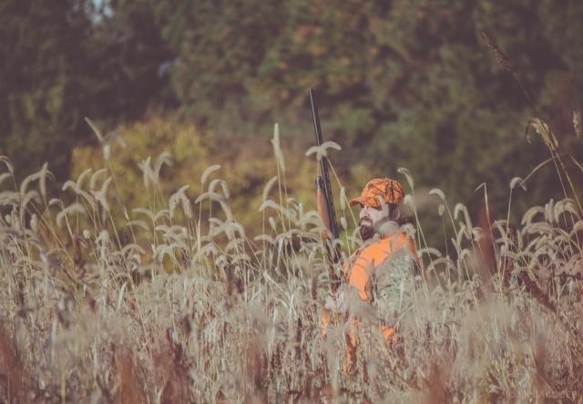 pheasant_hunting_rosehill_2016-35-of-73