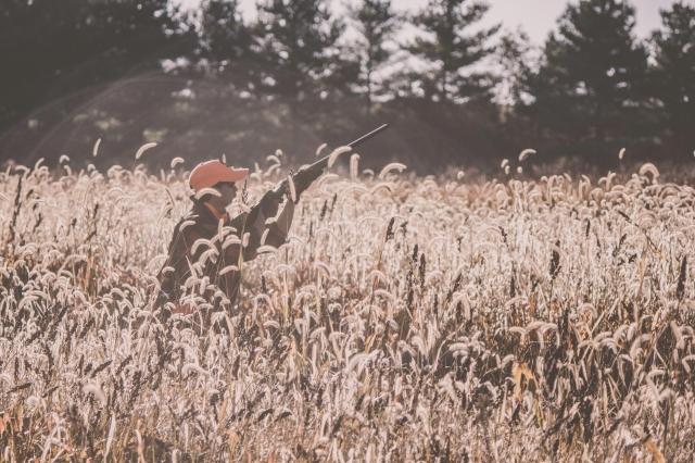 pheasant_hunting_rosehill_2016-38-of-73