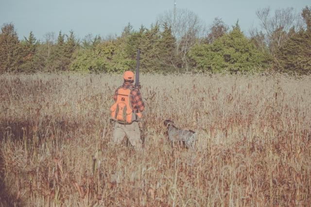 pheasant_hunting_rosehill_2016-40-of-73