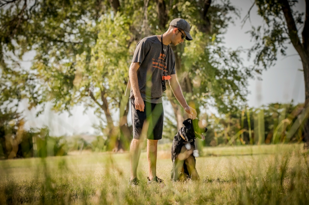 NO_LIMITS_KENNELS_2017_7_27 (136 of 215)