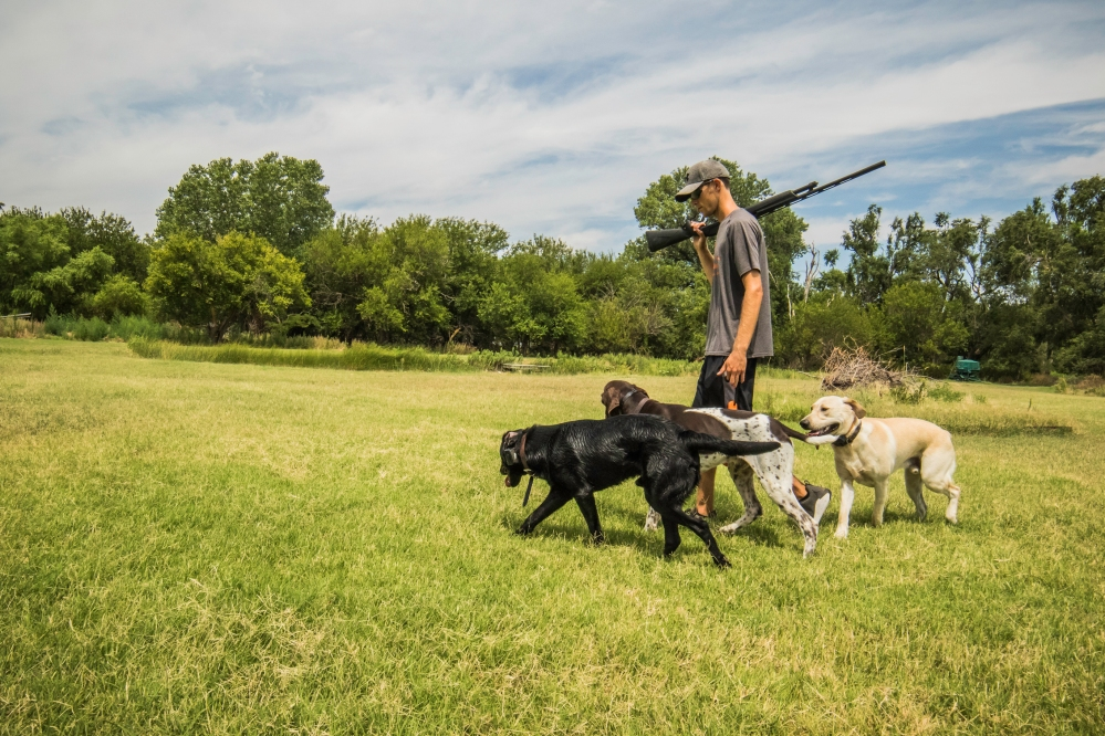 NO_LIMITS_KENNELS_2017_7_27 (198 of 215)