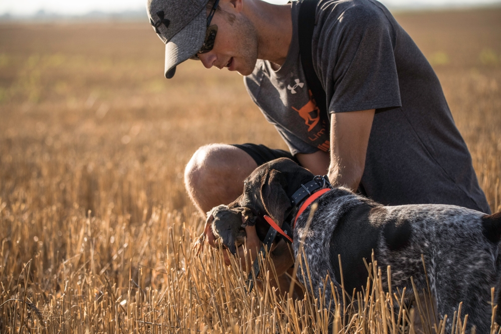 NO_LIMITS_KENNELS_2017_7_27 (88 of 215)
