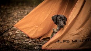 2017-10-14-Camping Green Ridge-0204
