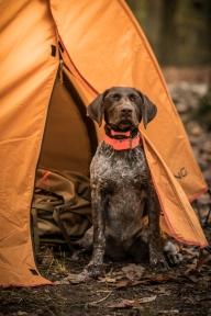 2017-10-14-Camping Green Ridge-0230